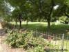 Father Filipiac Park