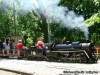 Wabash Frisco and Pacific Steam Railway