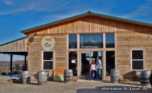 Charleville Vineyard Winery and Microbrewery