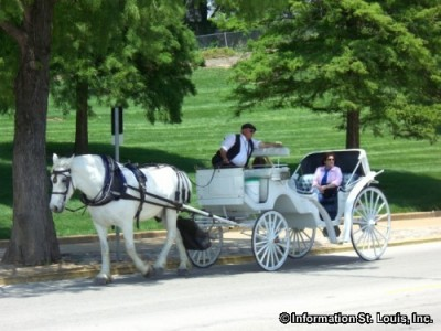 St Louis Carriage Company
