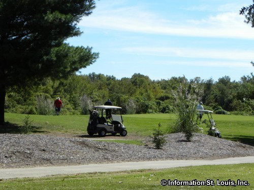 arlington greens golf   zip code