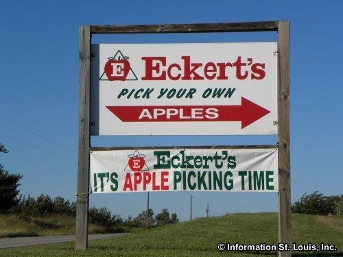 Eckert's Farm in Grafton