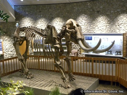 Mastodon State Historic Site in Jefferson County