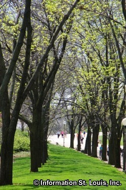 Springtime on the Arch Grounds!
