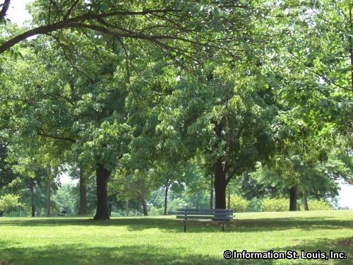 Tilles Park in St. Louis