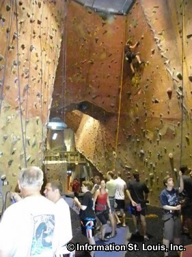Climbers at Upper Limits Rock Climbing Gym